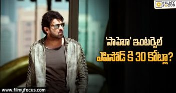 Saaho :30 crores Budget for Saaho interval episode