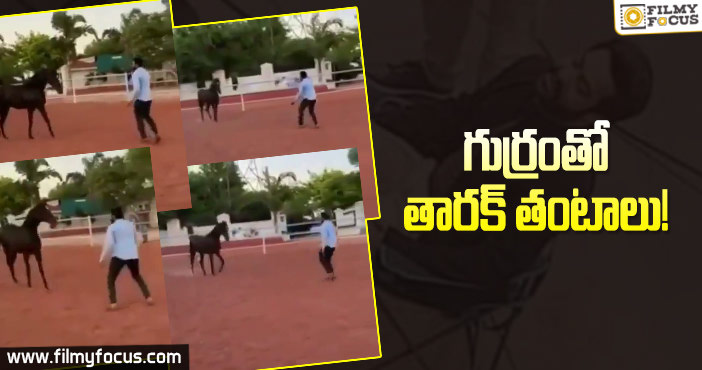 ntr-learning-horse-riding-for-rrr-movie