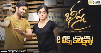 Bheeshma Movie 2 Weeks Box Office Collections